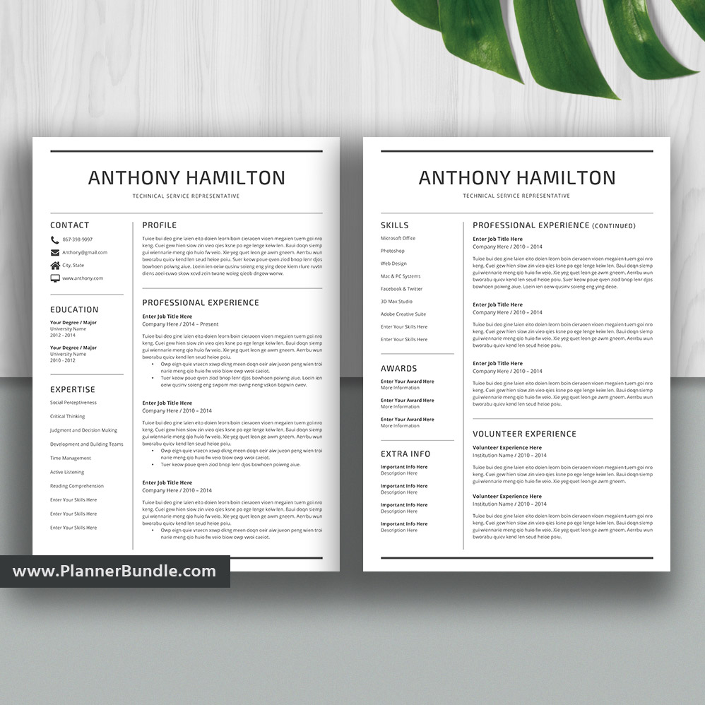 Simple Resume Template Job Cv Template 1 5 Page Resume Word