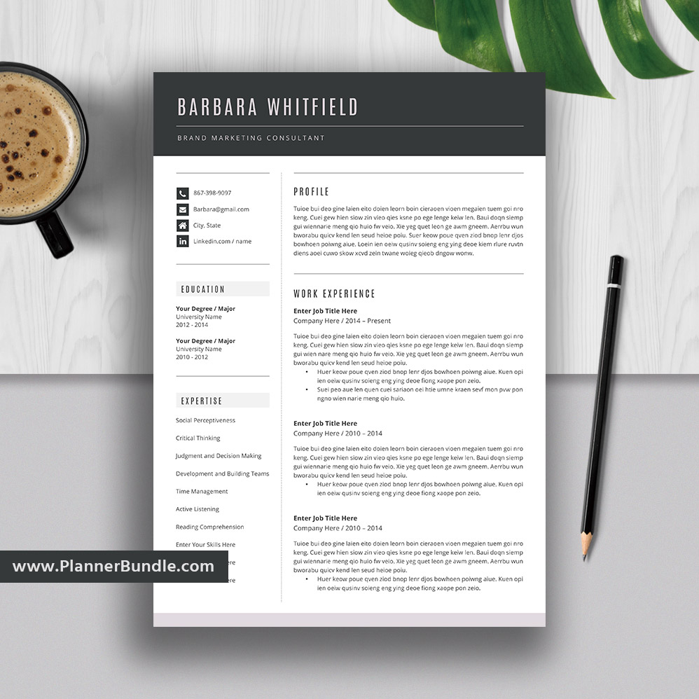 editable resume template 2019  curriculum vitae  cv layout  best professional resume  word