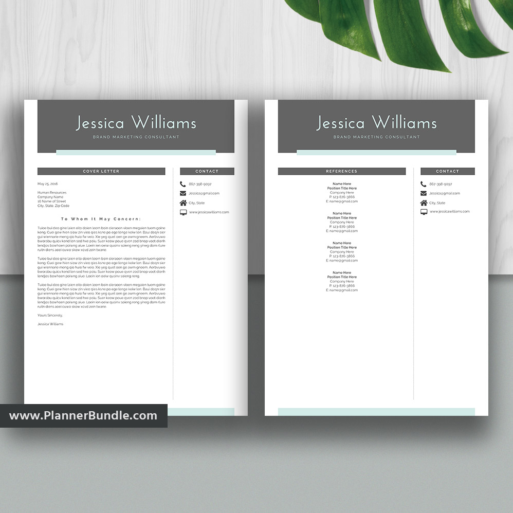 2020 resume template    cv template for ms word  cover