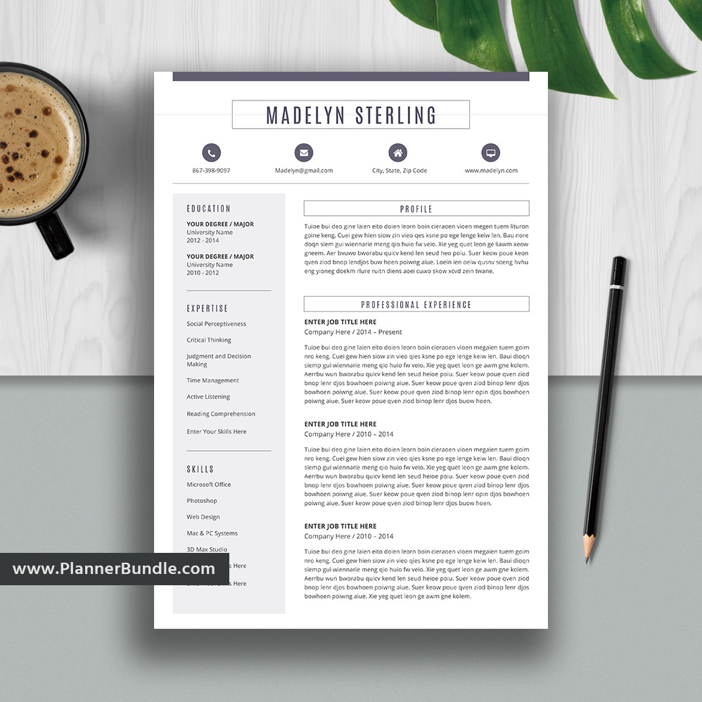 Editable Resume Template Job CV Professional Word