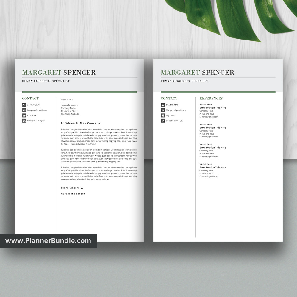 Professional Resume Template Simple Cv Template Student Resume
