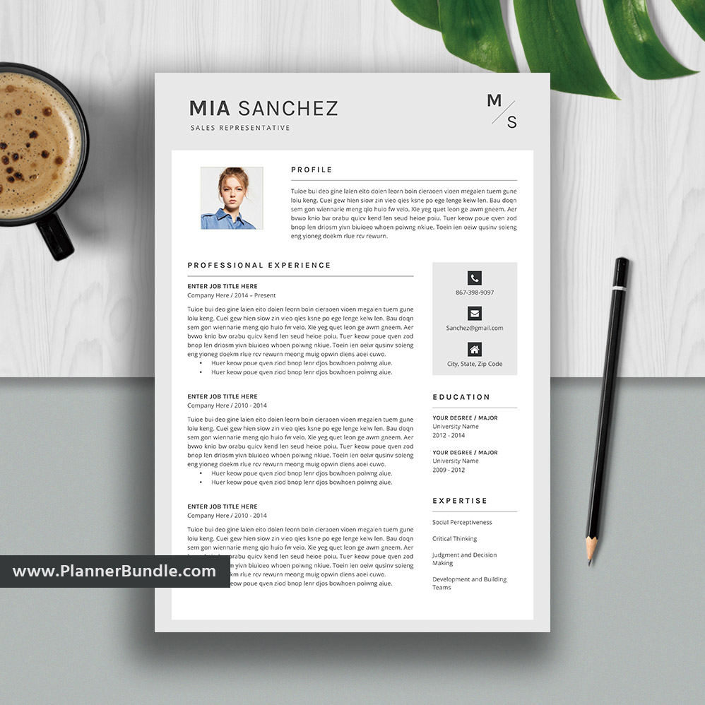 Editable Modern Resume Template Job Cv Template Professional