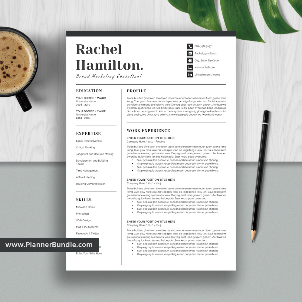 Simple Resume Template Modern CV Student Word