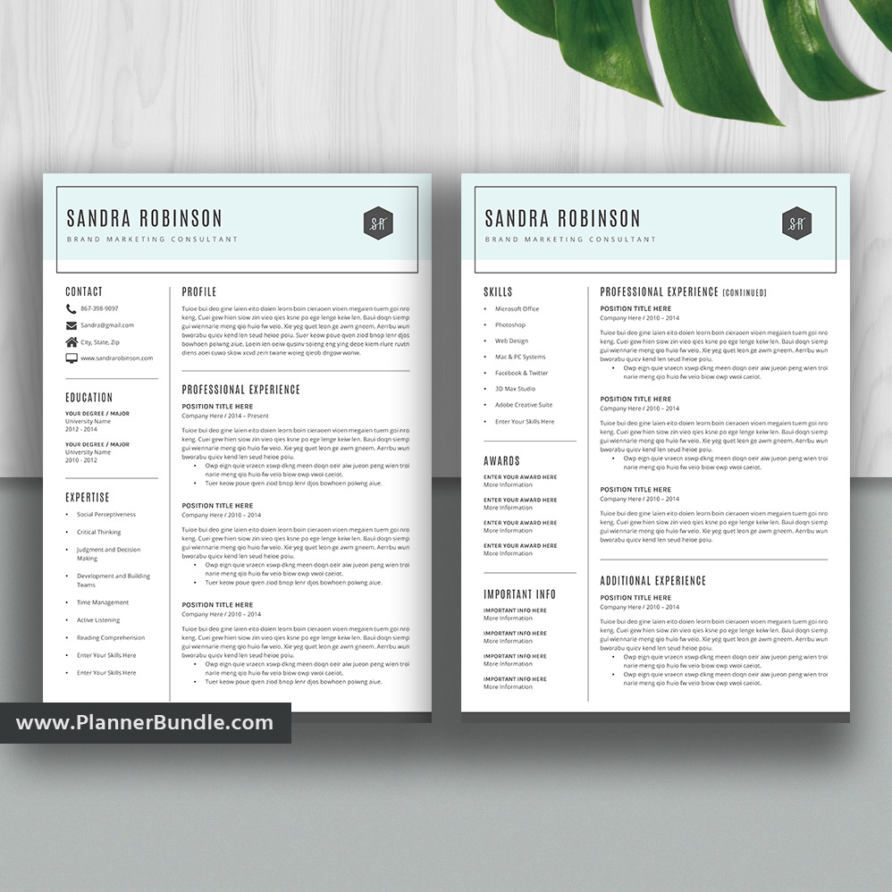 Simple Resume Template Modern Cv Template Student Word Resume