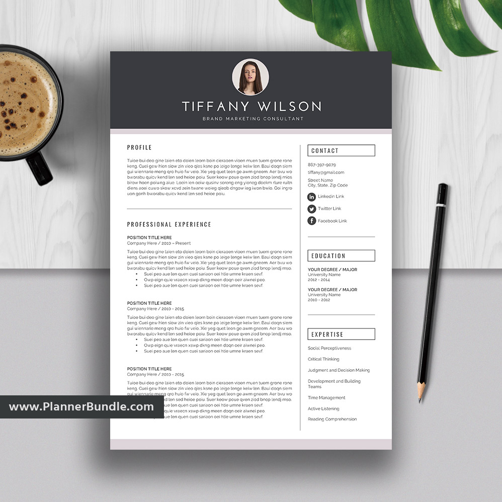 professional editable resume template 2019  graduate cv  simple resume template word  best