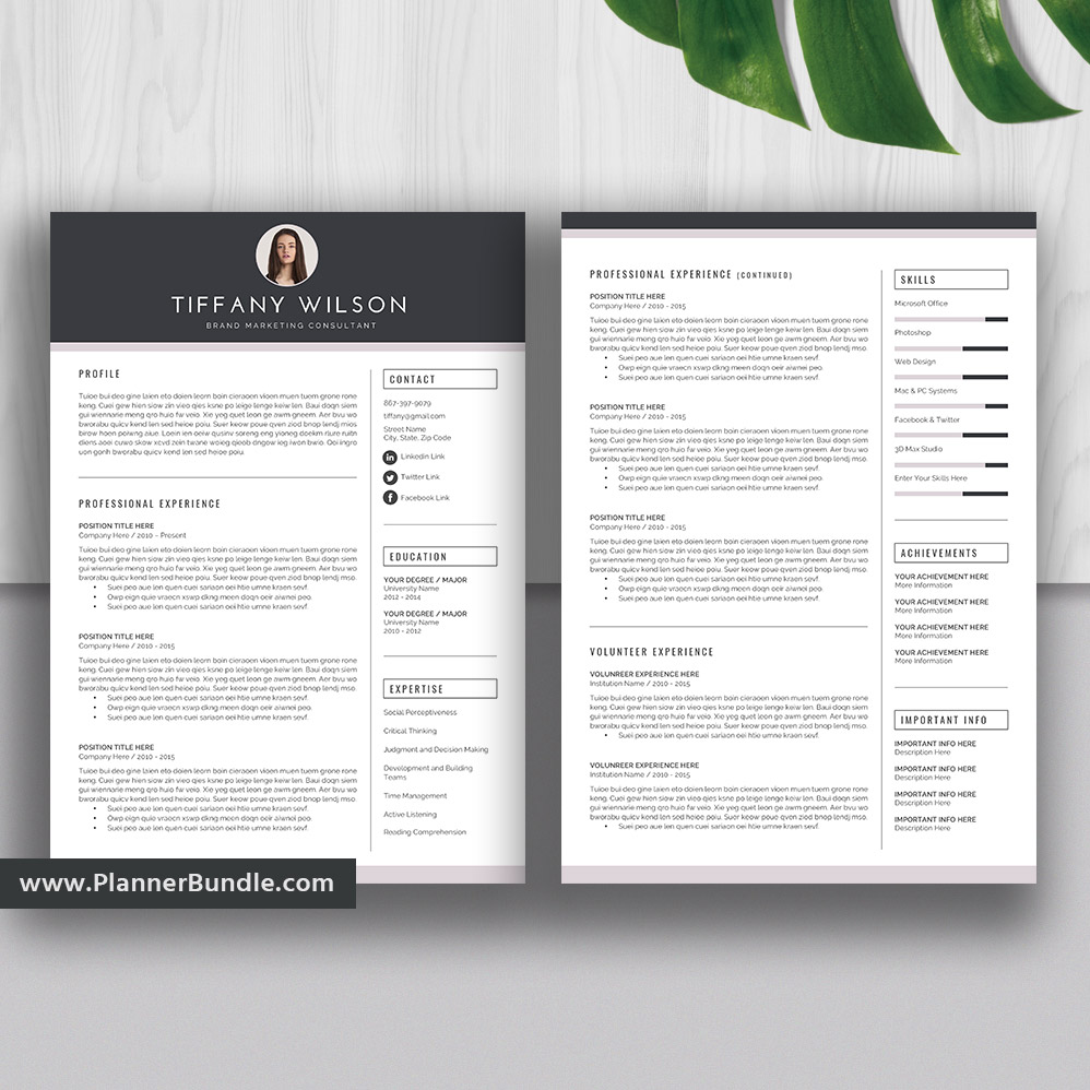 Professional Editable Resume Template